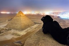 A group of tourists take photos from the top of Egypts Great Pyramid without permission