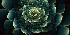 Awesome Fractals by Silvia Cordedda