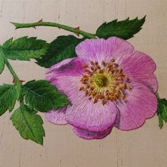 Wonderful Ribbon Embroidery Flowers by Hand Ideas. Enchanting Ribbon Embroidery Flowers by Hand Ideas. Hand Embroidery Flowers, Learn Embroidery, Silk Ribbon Embroidery, Embroidery Art, Embroidery Stitches, Embroidery Patterns, Thread Painting, Japanese Embroidery, Satin Stitch