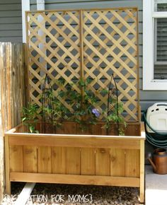 diy planter with trellis | didn't fill the box completely full with soil, although you could. Cedar Planters, Diy Planters, Garden Planters, Garden Beds, Home And Garden, Planter Ideas, Balcony Garden, Planter Boxes, Dream Garden