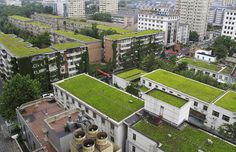 green-rooftop-city-ok