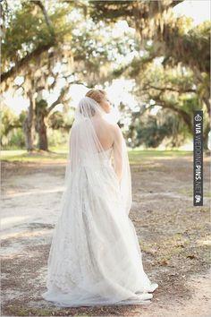 long wedding veil | CHECK OUT MORE IDEAS AT WEDDINGPINS.NET | #weddinghair