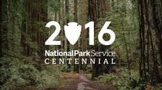 National Park Trail Guide, Map, and App Hiking Trail Maps, Hiking Trails, National Park Passport, National Parks, Anniversary Logo, Trail Guide, Park Trails, Park Service, Historical Sites