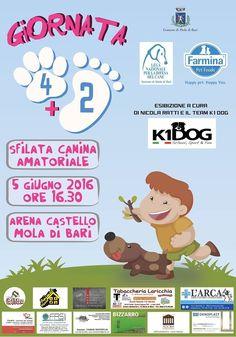 5/6 Giornata 4+2 organizzata dai #volontari #LegadelCane di #Mola