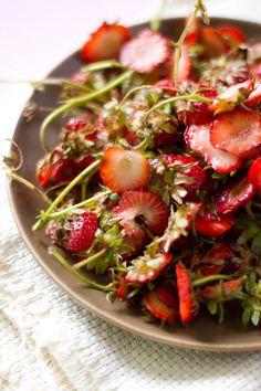 Rikki Snyder Photography | Blog | Strawberry Picking & A Pie