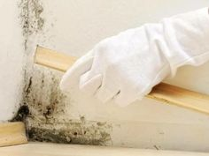 Mold is a fungus that appears in dark places at home, being difficult to remove. I will show you in this article how to get rid of mold without chemicals. Mildew Stains, Mildew Remover, Mold And Mildew, Get Rid Of Mold, How To Get Rid, How To Remove, Remove Mold, Soundproof Windows, Basement Windows