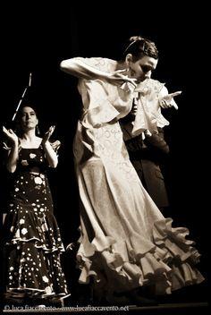 Flamenco - Paola Volta - Home