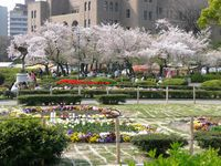 Tsuruma Park | What to See | Nagoya Info - Nagoya Travel Guide