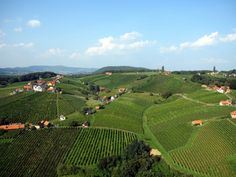 Vineyards in Kloech, Styria © Steirisches Thermenland Visit Austria, Heart Of Europe, Central Europe, Wineries, Capital City, My Happy Place, Alps, Homeland, Vineyard Vines