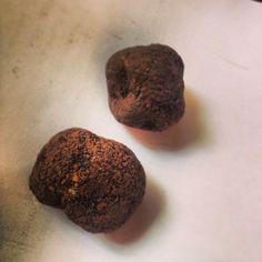 Trufa de Morella. oro negro