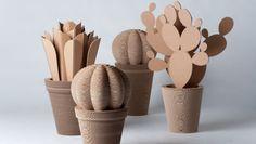 CactusNext vaso in cartone ondulato, l'idea innovativa per depurare l'aria