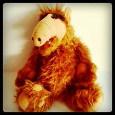 ALF! Do You remember this TV Icon of the 1980's?