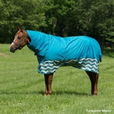 Horseware Amigo Mio 600D Combo TO Blanket 250g 75I by Horseware. $76.49. Horseware Amigo Mio 600 Denier Combo Detachable Neck Turnout Blanket-250g Medium Warmth Horseware(R) Amigo Mio(R) Turnouts provide a value price with all the quality and performance that Horseware(R) brands are well known for. Exclusive new Mezzo design adds a touch of western design that can be coordinated with a solid for a complete look. Features Original Rambo(R) pattern for fit with paten...