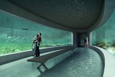 Wolrd-class aquarium design and construction. LUXAQUA offers consulting and engineering services for extra-large aquarium design and built. Please contact us for your large aquarium project, we will manage it ! Aquarium Architecture, Zoo Architecture, Concept Architecture, Aquarium Design, Home Aquarium, Jurassic World, Jurassic Park, Conception Aquarium, Building Exterior