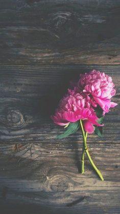 Wood n flowers