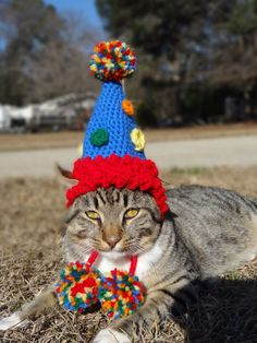 The Party Cat's Birthday Hat - Cat Puppy Small Dog Pet Animal - Hat Clothing Clothes Accessories Costume Headwear Apparel. $21.00, via Etsy. #cat #cats #birthday #party #cat hat #crochet #crocheted #pets #pet costumes #small dogs #small dog #cat accessories #cat fashion #cat clothes #cat clothing #small dog costumes