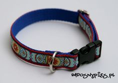 Crazy collors craft dog collar