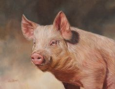 The Wildlife Art of David Stribbling. Original oil paintings of wildlife subjects by British artist, David Stribbling. African wildlife and big cats Farm Paintings, Wildlife Paintings, Wildlife Art, Animal Paintings, Happy Animals, Cute Animals, Cute Baby Pigs, Photo Animaliere, Tiger Painting