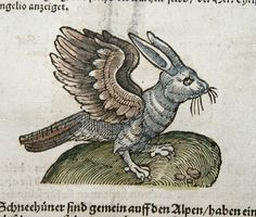 Roman naturalist-scholar Pliny the Elder AD), documented it in his massive treatise Naturalis Historia - in which he claimed that it inhabited the lofty mountain peaks of the Alps. AKA The Wolpertinger. Medieval Drawings, Medieval Paintings, Medieval Art, Medieval Manuscript, Illuminated Manuscript, Illustrations Vintage, Illustration Art, Fantasy Creatures, Mythical Creatures
