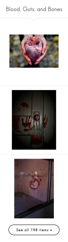 """""""Blood, Guts, and Bones"""" by lunar-exorcism ❤ liked on Polyvore featuring pictures, backgrounds, images, photography, pic, blood, photos, fillers, pics and red"""