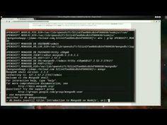 Introducing MongoDB on Node.js