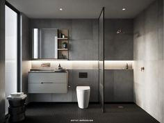 gray bathroom inspiration with horizontal niche detail