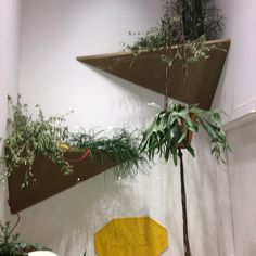 Plants shop window Milano! Cool for a bathroom