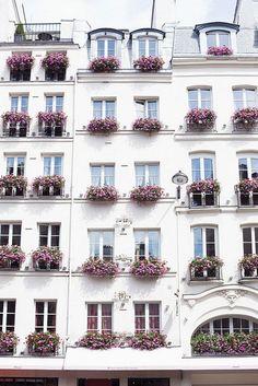Paris balconies.