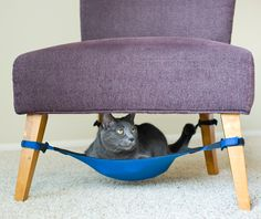 Kitty Cradle : A spacing saving cat hammock your feline will love. Now I just need to get the cat to go with it!