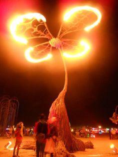 Burning Man http://www.burningman.com/whatisburningman/about_burningman/faq_what_is.html#Getting_to_Burning_Man