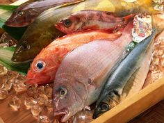 Pacific Salmon Industries Inc : Herring, salmon, seafood, smoked...