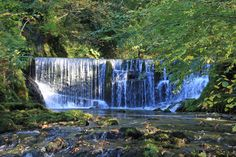 Stock Ghyll Force, Ambleside. Autumn is on its way...
