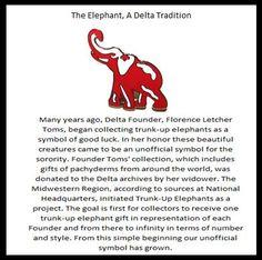 Why elephants?