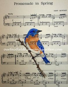 High quality print of a Blue Bird watercolor painting on vintage sheet music by Barb Rosen* print is of bird and vintage sheet music only (watermarked in this picture for security)Print size 8 1/2 in wide and 11 3/4 in tall. Fits a standard 8 x 10 mat or frame nicely.