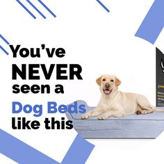 Check the Pet products Amazon Store  for  best dog beds amazon in 2020. #ads #amazon Dog Beds For Small Dogs, Cool Dog Beds, Large Dogs, Pet Products, Ads, Amazon, Store, Check, Collection