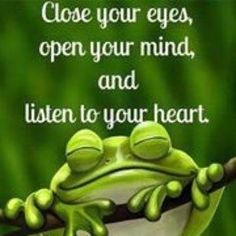 """This is fairygodmother frog speaking, """"Close your eyes, open your mind and listen to your heart. Words Quotes, Wise Words, Life Quotes, Sayings, Funny Frogs, Cute Frogs, Frog Quotes, Frog Pictures, Frog Pics"""