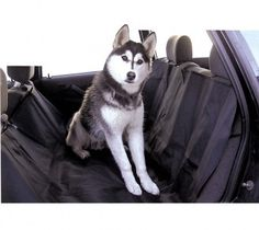 New Pet Car Suv Van Back Rear Bench Seat Cover Waterproof Hammock for Dog Cat Supplies *** Read more at the image link. (This is an affiliate link) Pet Booster Seat, Pvc Transparent, Bench Seat Covers, Dog Pounds, Dog Car Seats, Banquette, Dog Carrier, Cat Supplies, New Puppy