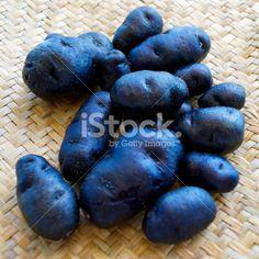 Taewa or Riwai, Maori Potatoes - Urenika Variety Royalty Free Stock Photo Image Now, Royalty Free Stock Photos, Potatoes, Outdoors, Easy, Photography, Maori, Photograph, Potato