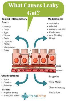Do You Have Leaky Gut? (Plus warning signs to look for) What causes Leaky Gut? Plus signs to look ou Calendula Benefits, Lemon Benefits, Coconut Health Benefits, Slim Waist Workout, Lifesum App, Gut Health, Health Tips, Eyes Health, Adrenal Health