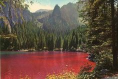 Lake Tovel - Trentino Alto Adige - the red color appears sometimes: it is due to anoxial microbial activity Cool Places To Visit, Places To Go, Red Lake, Italy Landscape, The Mountains Are Calling, Visit Italy, Belleza Natural, Italy Travel, Where To Go