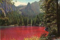 Lago di Tovel: grazie ad un alga particolare ha assunto per molto tempo una colorazione rossa...ma dietro vi è anche una leggenda...