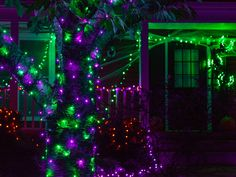 Outside Halloween Decorations, Halloween Room Decor, Halloween Trees, Halloween Haunted Houses, Outdoor Halloween, Halloween House, Halloween Fun, Outdoor Decorations, Happy Christmas Day
