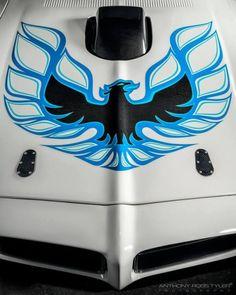 Detroit Speed Inc