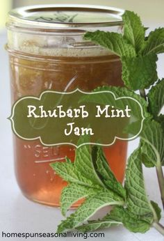 Take advantage of the early spring homegrown flavors with this Rhubarb Mint Jam Mint Recipes, Rhubarb Recipes, Jelly Recipes, Rhubarb Ideas, Oxtail Recipes, Cooker Recipes, Home Canning, Canning Tips, Jam And Jelly