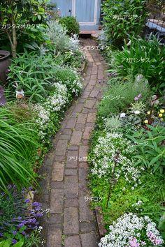 Create your own beautiful backyard garden or front lawn oasis. Garden Lighting Wedding, Bush Garden, Garden Studio, Garden Signs, White Gardens, Garden Cottage, Garden Paths, Garden Landscaping, Back Gardens