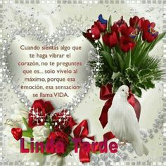 Linda tarde Christmas Wreaths, Christmas Ornaments, Good Afternoon, Beautiful Day, Animation, Wallpaper, Holiday Decor, Flowers, Gifts