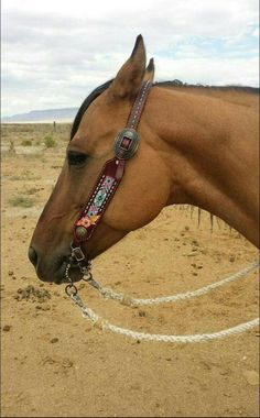 Beaded bridle and halter noseband