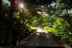 Traseu cu bicicleta MTB XC El Camino de Santiago del Norte - 10: Gontan - Goiriz - Puente de Saa - Baamonde . MTB Ride El Camino de Santiago del Norte - 10: Gontan - Goiriz - Puente de Saa - Baamonde - Galicia, Spania Country Roads, Mtb Bike, Camino De Santiago, Bridges, Norte