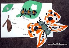 Kid's Craft: Life Cycle of a Butterfly