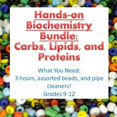 Three Hands-On Activities. Students build carbohydrates, lipids, and proteins out of pipe cleaners and beads.  These awesome activities really help students grasp the abstract concepts often taught in the first few units of biology class.  Grades 9-12.